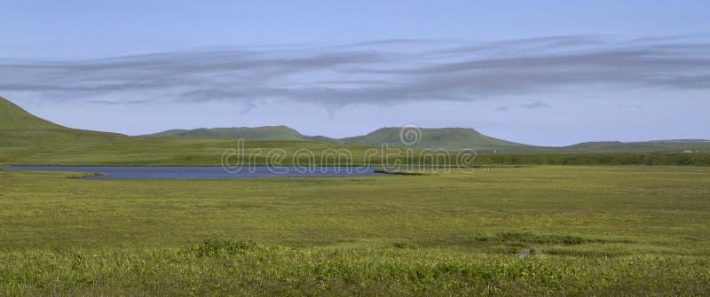 湖和沼泽的谷在以t为背景的寒带草原 免版税库存照片