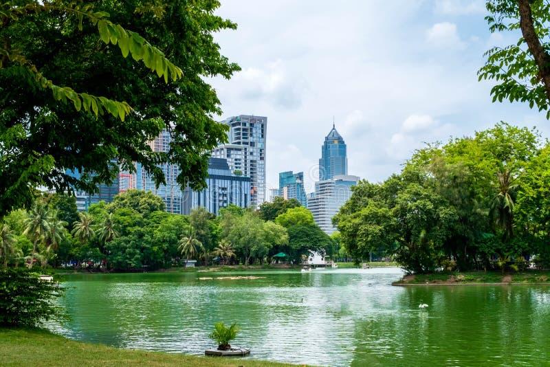 湖和现代大厦Bautiful视图在Lumpini公园,曼谷,泰国 库存图片