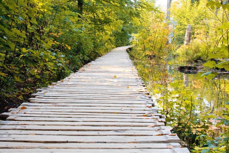 湖国家公园plitvice 库存图片