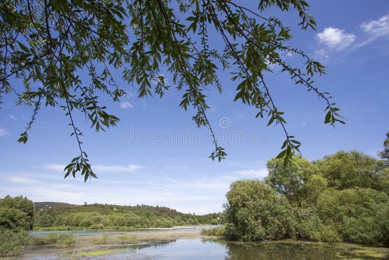 湖圣徒Cassien 免版税库存图片