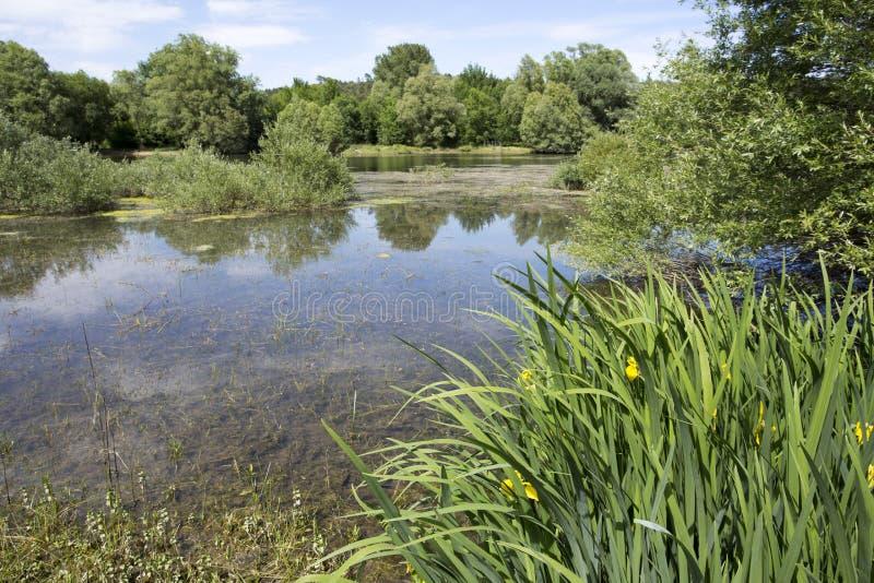 湖圣徒Cassien 免版税图库摄影