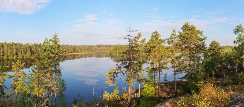 湖在一个晴朗的夏天早晨 免版税库存图片