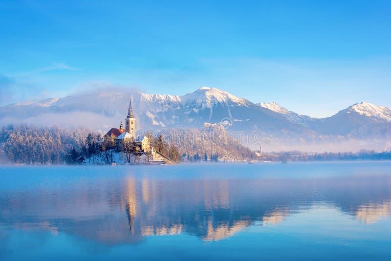 湖在与清楚的天空的一个冬天晴朗的早晨流血 库存图片