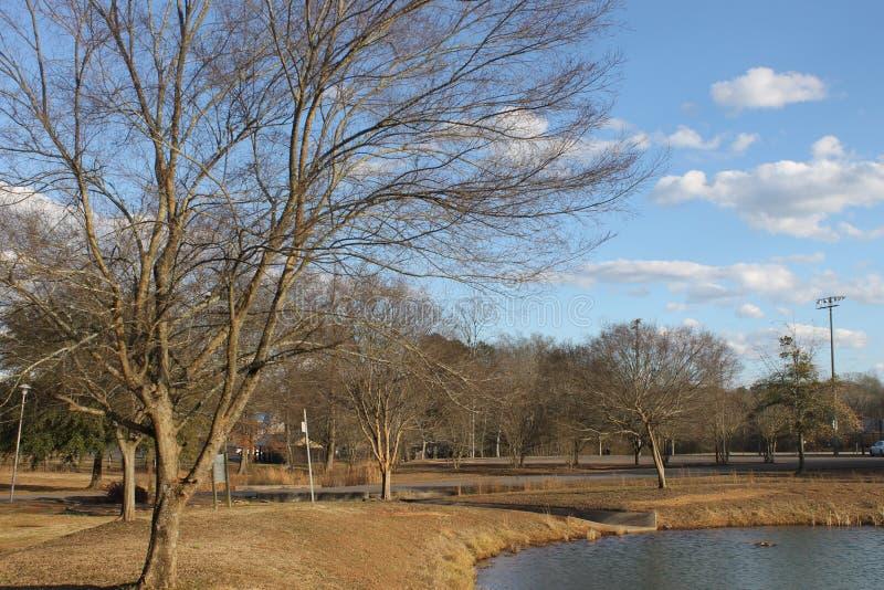 湖在公园和晴天 免版税库存图片