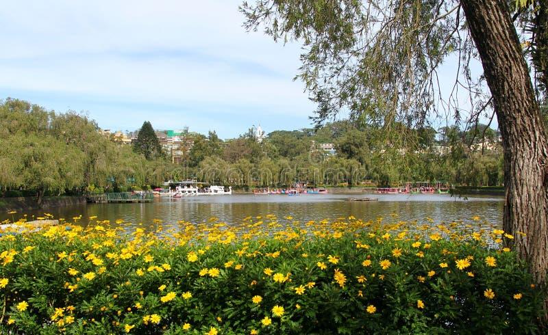 湖在公园 图库摄影