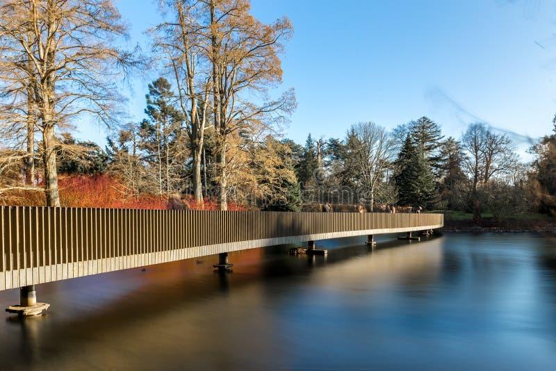 湖在冬天在Kew庭院里,伦敦 免版税图库摄影