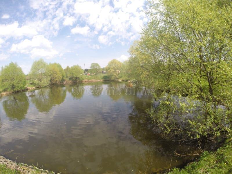 湖在动物园里 库存图片