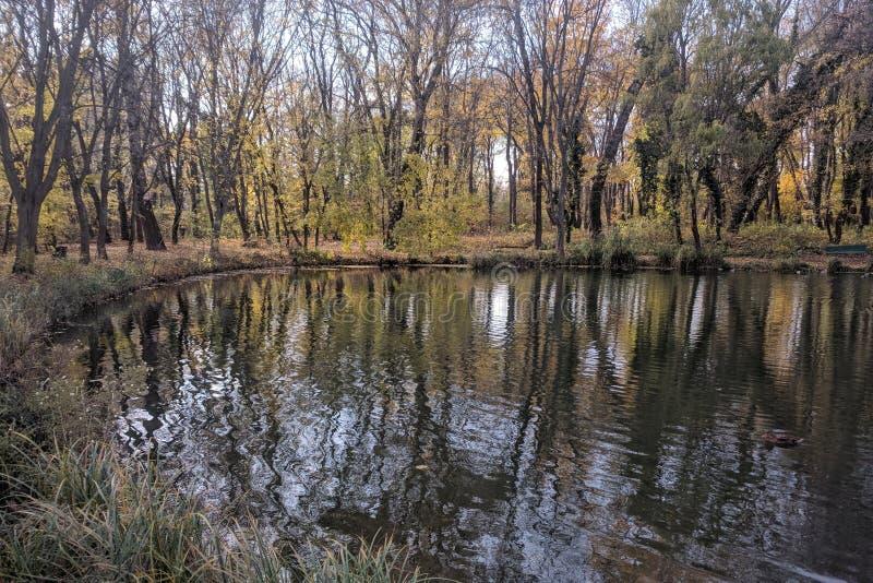 湖在匈牙利 库存图片