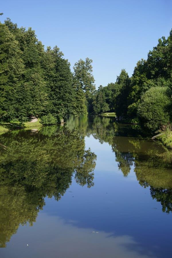 湖在夏天庭院里 免版税库存图片