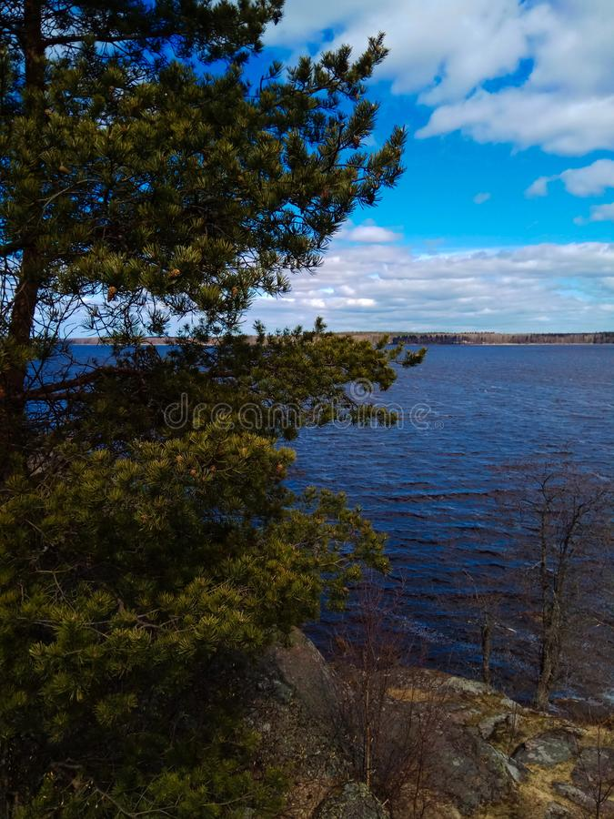 湖在星期一回购公园  维堡 俄国 免版税库存图片