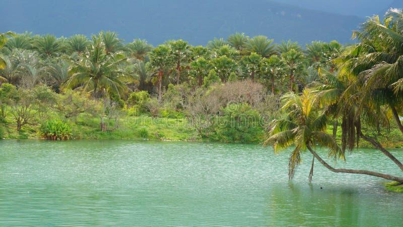 湖在村庄 免版税图库摄影