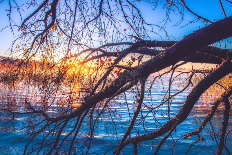 湖在秋天的黎明 免版税库存照片