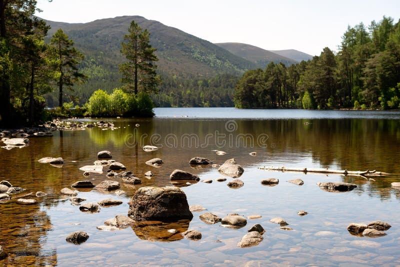 湖在Cairngorms国家公园,苏格兰 免版税库存图片