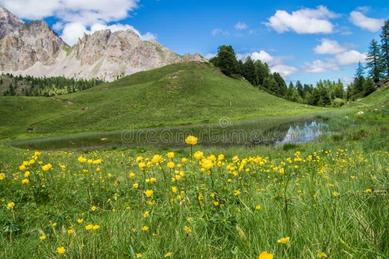 湖在queyras的miroir ceillac在hautes alpes在法国 免版税库存照片