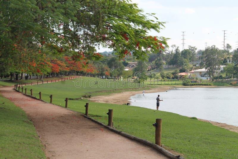 湖在Vinhedo, São保罗状态乡下,在巴西 库存图片
