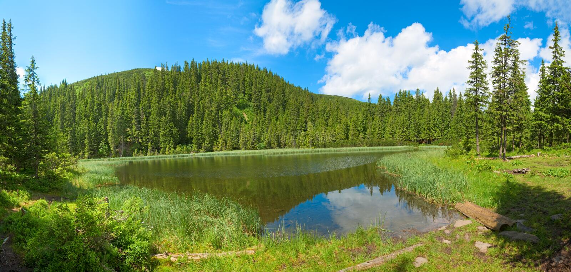 湖山夏天 库存照片