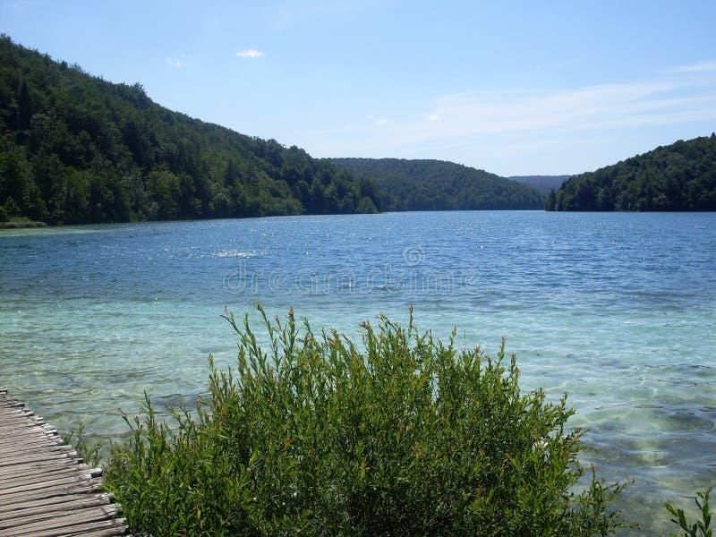 湖岸五颜六色和充满活力的风景  平静的风景有用作为背景 降低湖峡谷 全国Plitvice的湖 免版税库存图片