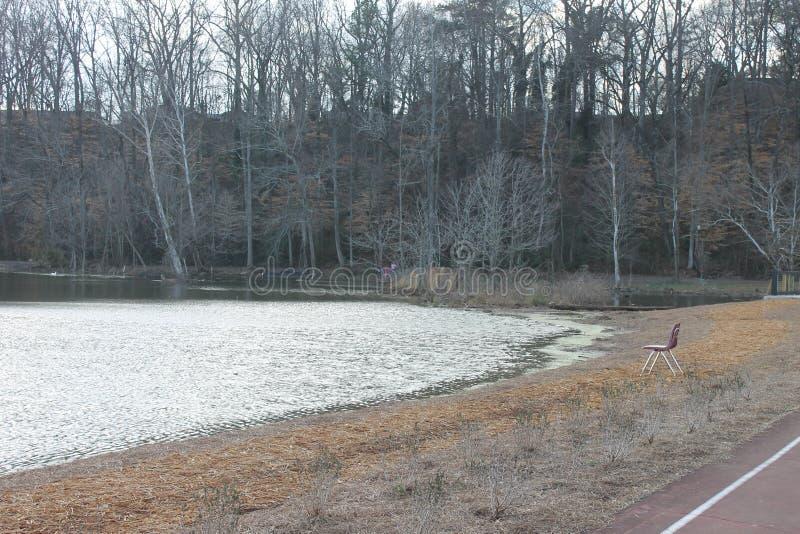湖岸在湖的狗冷的morninig 免版税图库摄影