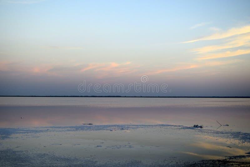 湖布尔索尔,阿尔泰疆土,Kulundinskaya凹陷,自然盐的提取 免版税库存图片