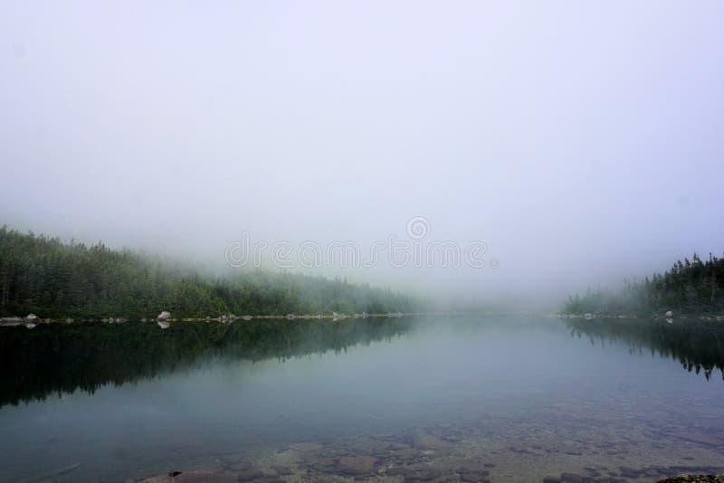 湖平静 免版税库存图片