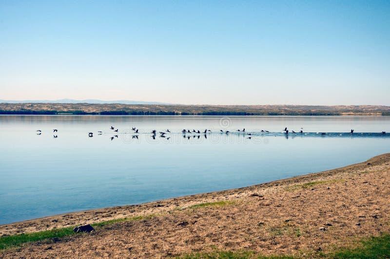 湖撕毁了Khol 免版税库存照片