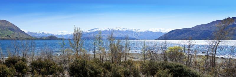 湖新的wanaka西兰 库存照片