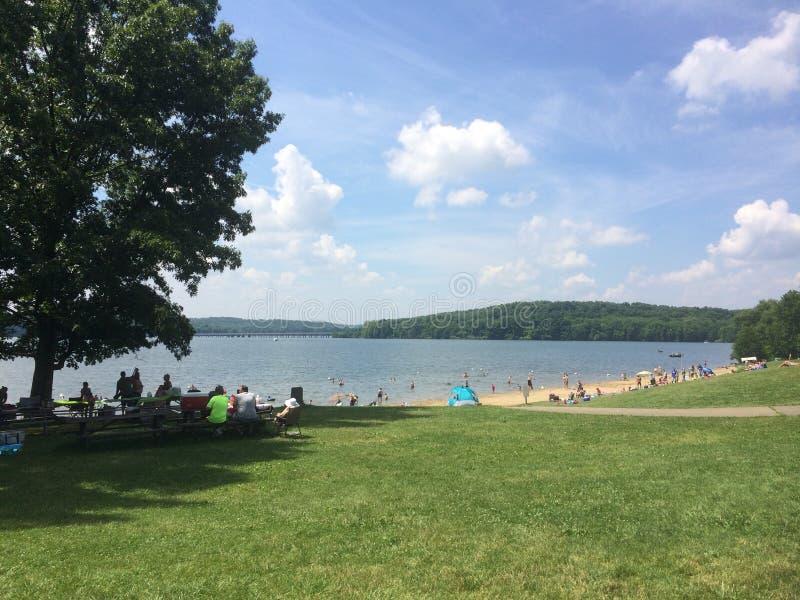 湖旁边海滩 免版税图库摄影