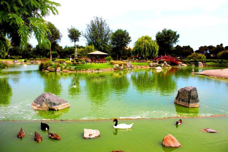 湖日本庭院拉塞雷纳智利 库存图片