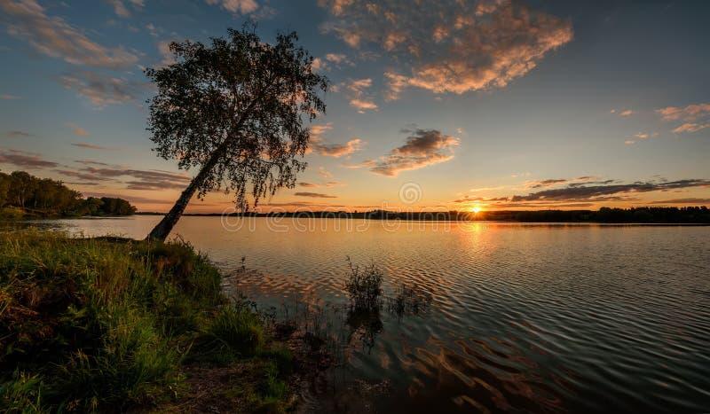 湖日落太阳覆盖树天空 免版税库存图片