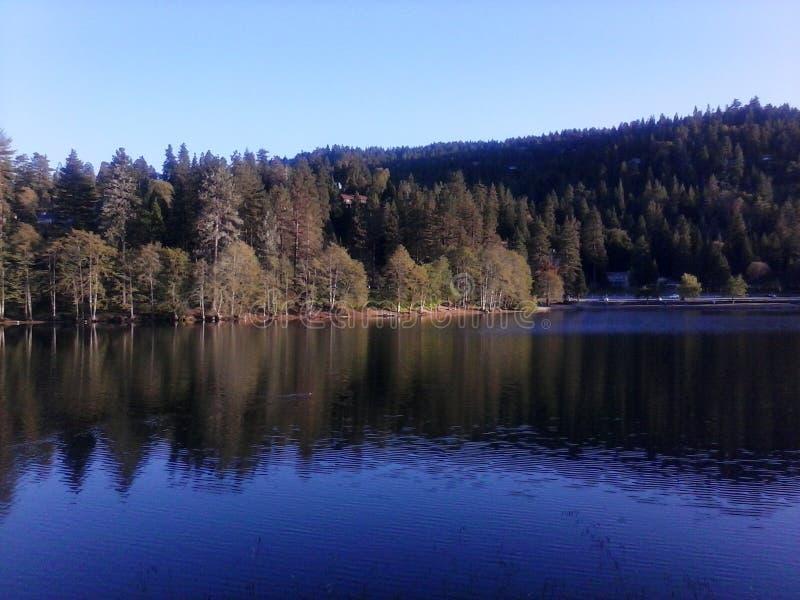 湖格里 库存图片