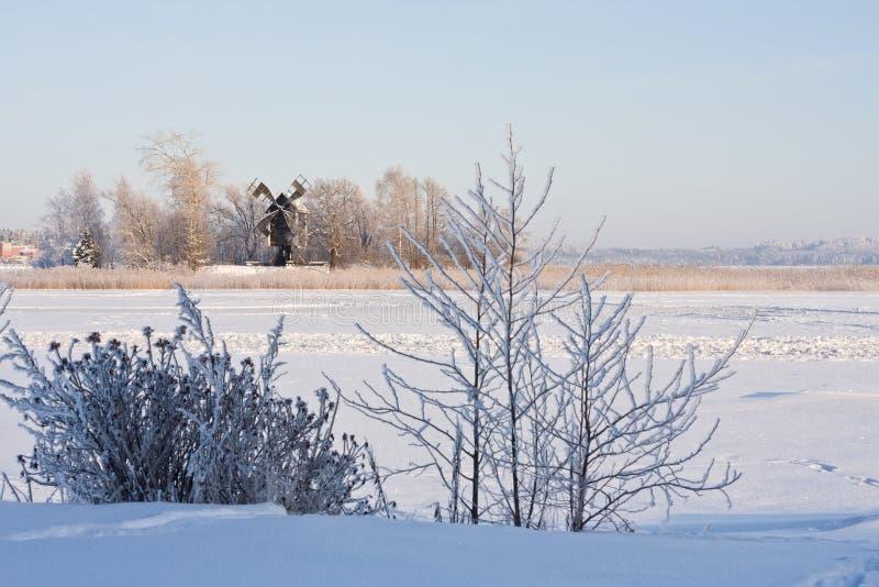 湖横向冬天 免版税库存照片