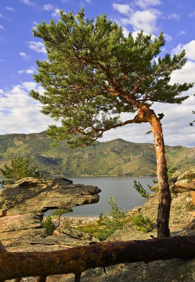 湖横向山夏天 库存图片