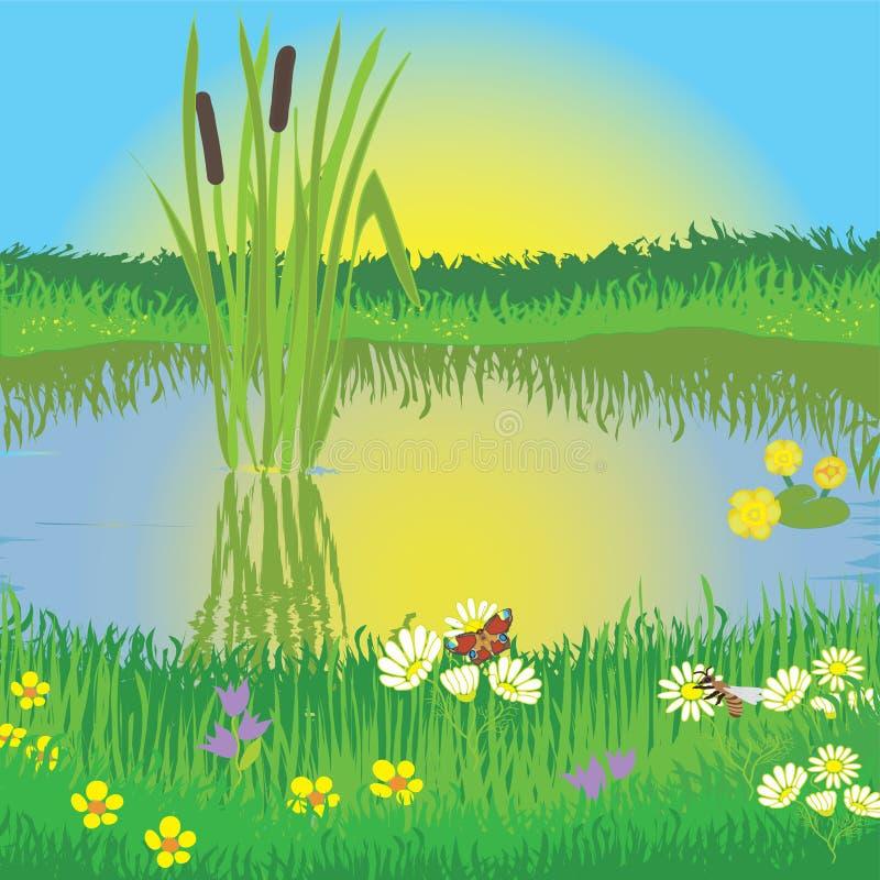 湖横向草甸 向量例证