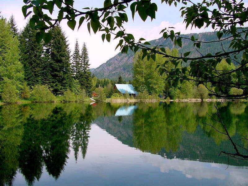 湖淡紫色反映 库存图片