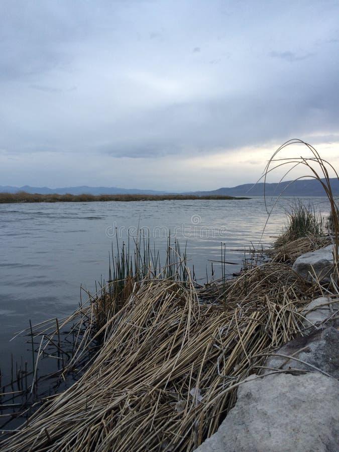 湖犹他 库存图片