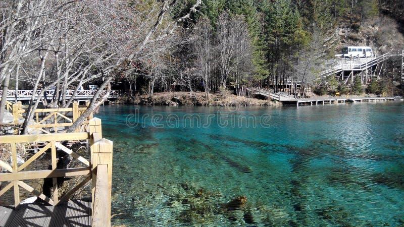 湖用与燕子深度的清楚的酥脆水 库存照片