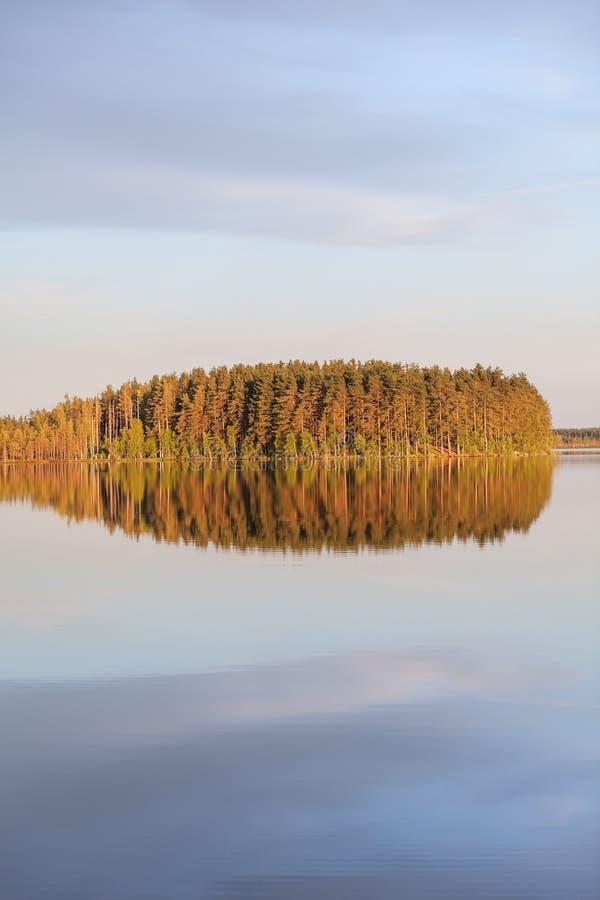 湖的令人惊讶的无风光滑的表面 根据落日和云彩反射的森林在镇静水 卡累利阿,俄罗斯 免版税库存照片