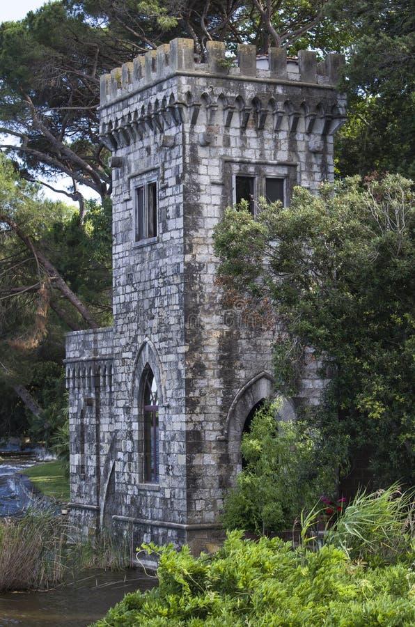 湖的塔 免版税库存图片