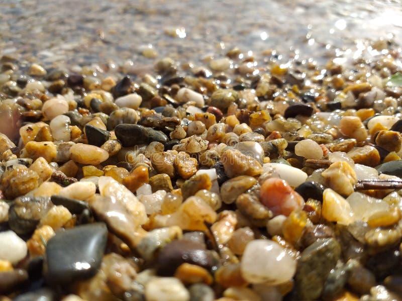 湖的小卵石 免版税库存照片