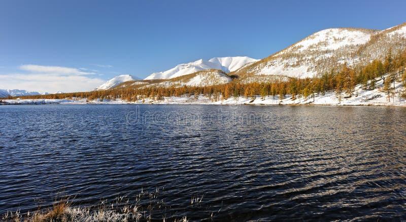 湖的美好的秋天视图 奥伊米亚康 雅库特 免版税库存照片