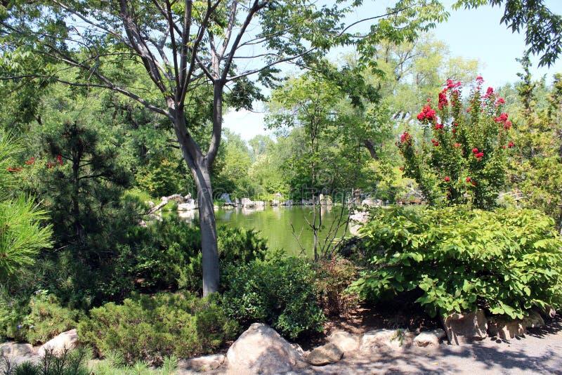湖看法日本庭院的 库存图片