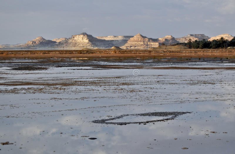 湖绿洲盐siwa 库存图片