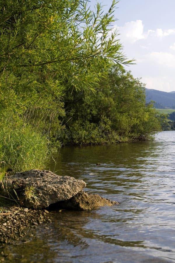 湖边平地 免版税图库摄影