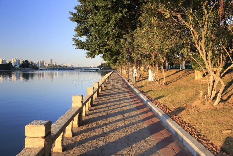 湖边早晨 库存图片