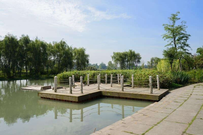 湖边码头在晴朗的夏天早晨乡下  库存图片