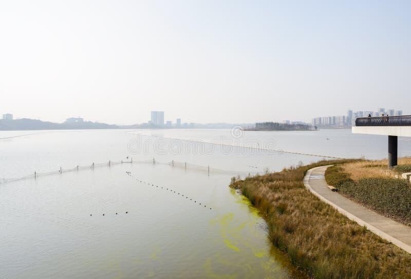湖边道路和平台在晴朗的冬天下午 免版税库存照片