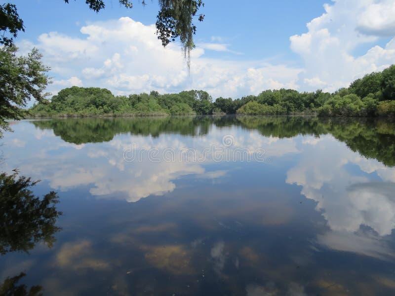 湖阿丽斯 库存照片