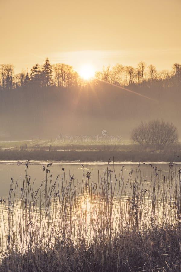 湖风景在与薄雾的早晨阳光下 图库摄影