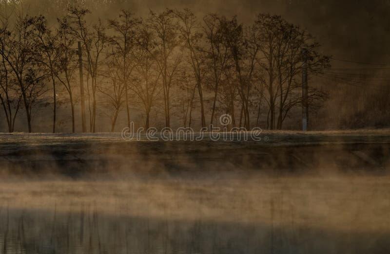 湖风景, Corbeanca,伊尔福夫县,罗马尼亚 图库摄影