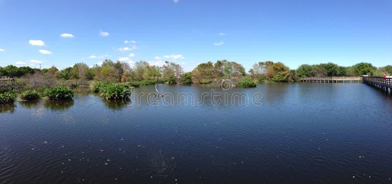 Download 湖风景 库存照片. 图片 包括有 本质, 云彩, 空白, 结构树, 户外, 室外, 夏天, 天空, 蛙泳 - 30328734